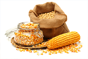 Жатва-2019: В Украине собрано 42,4 тонн зерна