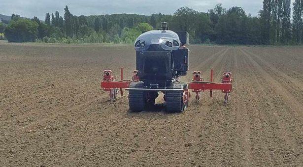Роботи витіснили людину з процесу вирощування кукурудзи