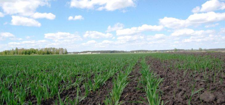 Україна посідає дев'яте місце в світі за площею орних земель — Мінекології