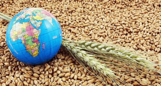 Вьетнам возобновит импорт украинской пшеницы