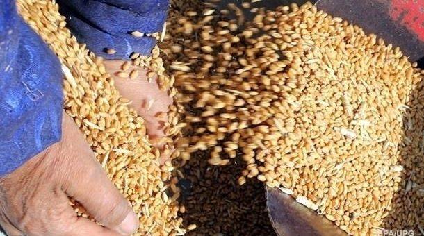Украина экспортировала 27,5 млн т зерна
