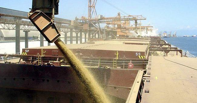 Объем экспорта украинского зерна с начала сезона превысил 24 млн. тонн