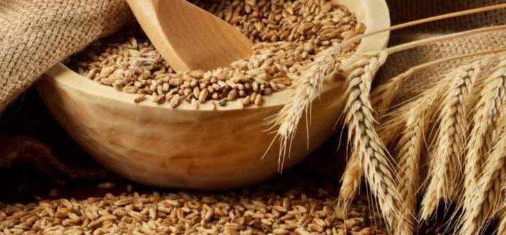 Иностранные покупатели украинской пшеницы увеличили темпы импорта в 1,5 раза