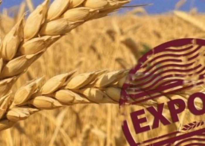 eksport-zerna-almeida